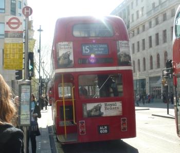 le vieux bus 15