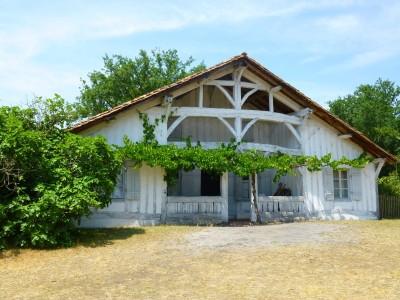 la maison du maître