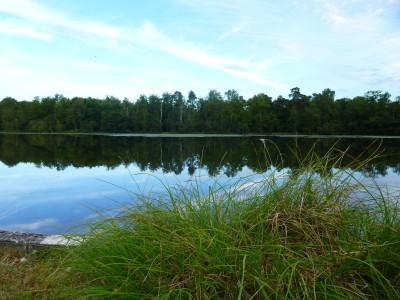 un étang sur Nouan