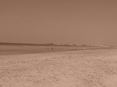 """grande plage"" à St Gilles"
