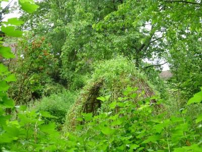 une cabane de roseaux pour mieux observer
