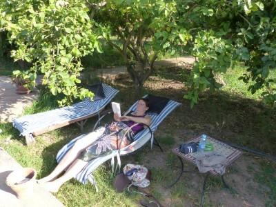 sieste sous les citronniers