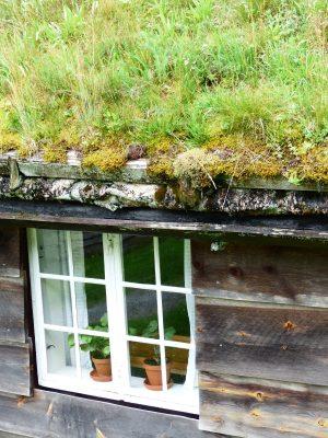 système de gouttière en écorce et toit d'herbes