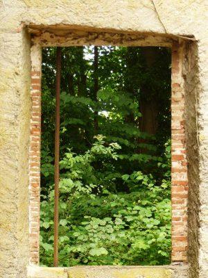 l'entrée du moulin